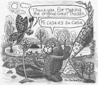 great thicket cartoon