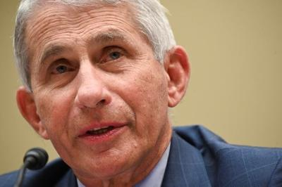 fauci interview