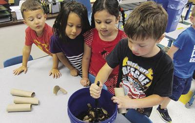 Coles students launch school-wide composting program