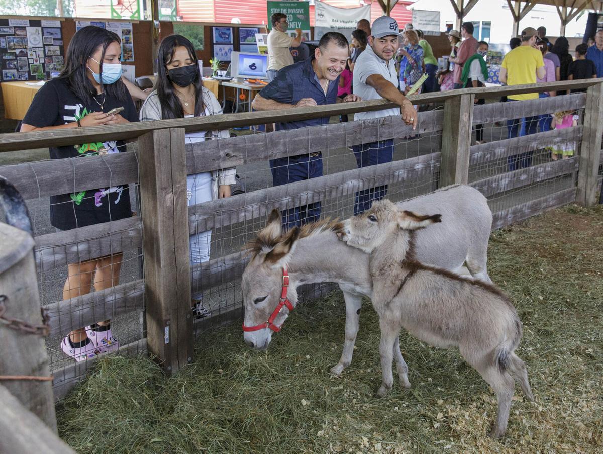 PW County Fair 002.jpg