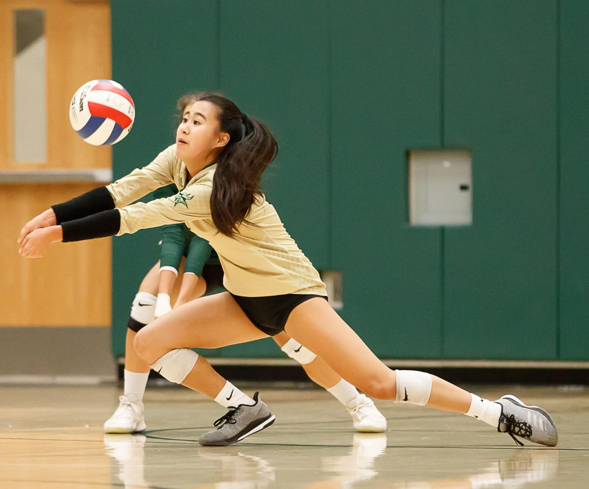 Langley volleyball 7
