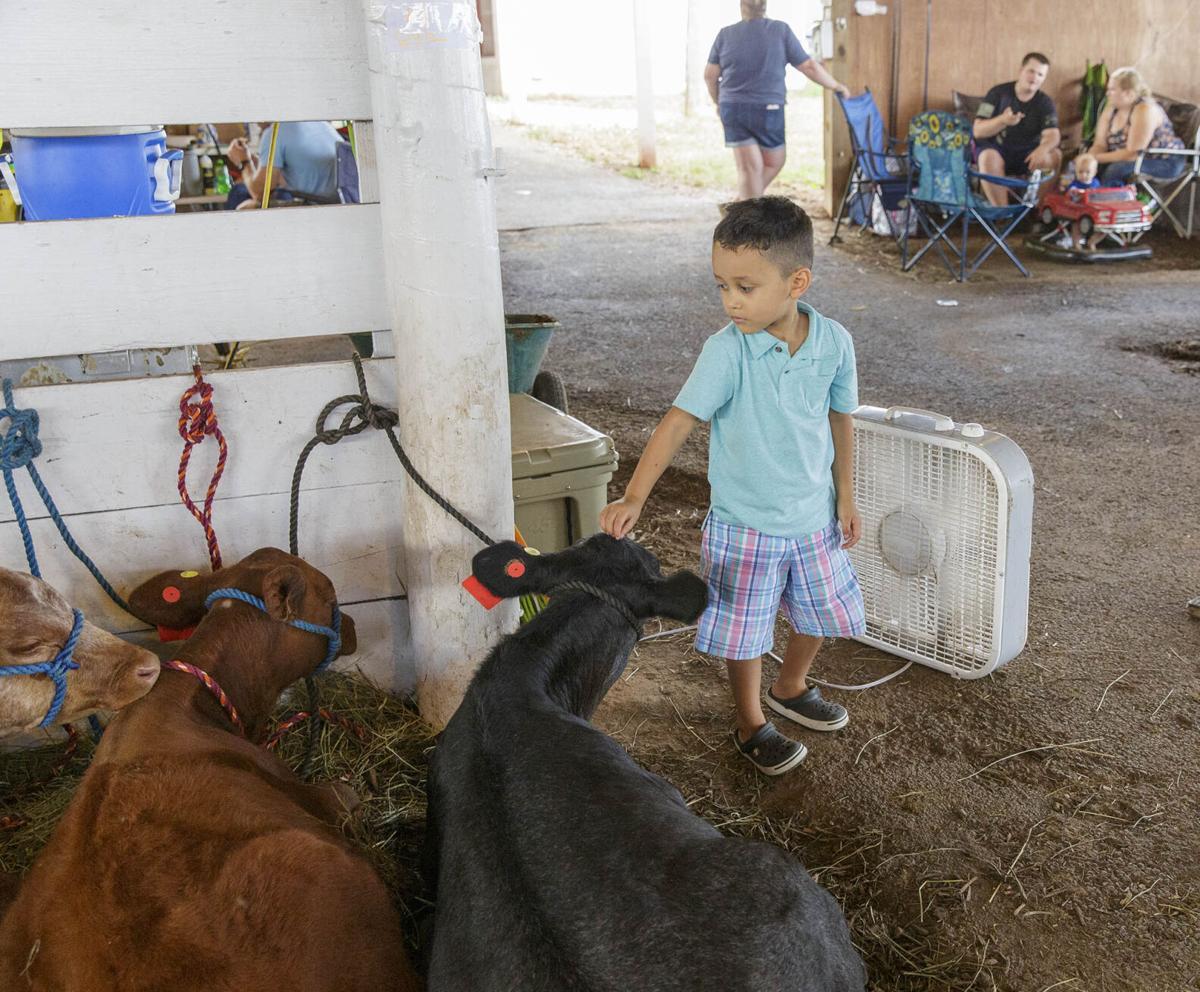 PW County Fair 012.jpg