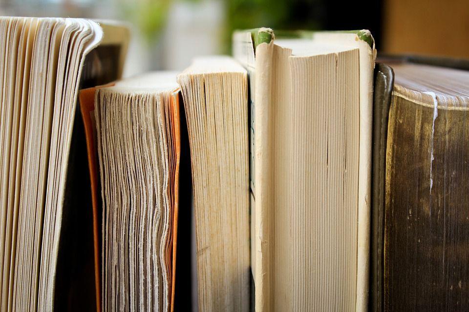 Library books shelf pixabay