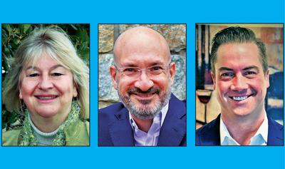 Vienna Council candidates aim to add voices to local scene