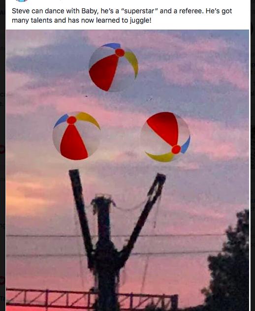 Steve the crane