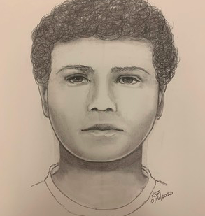 Leesburg sexual assault drawing