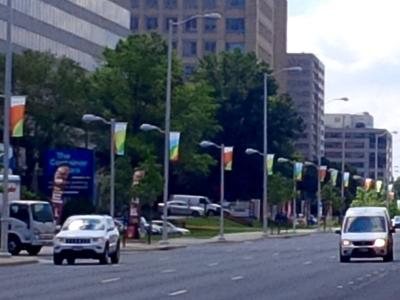 Flags in Tysons Corner
