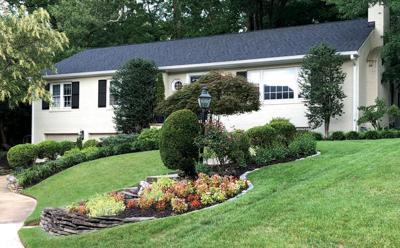 Arlington home review, 8/29/19
