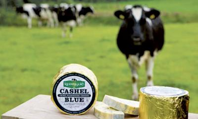 CURD QUIPS: Time for that pot of gold – go with real Irish cheeses