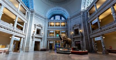 Smithsonian Museum of Natural History.jpg