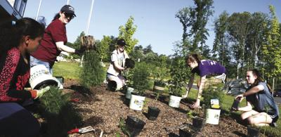 Girl Scouts add pollinator garden at fire station
