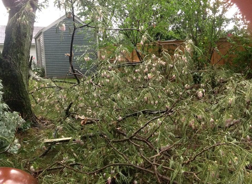 storm3_Carleen Washington.jpg