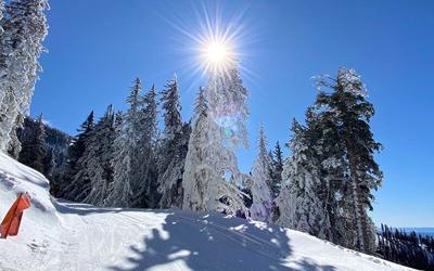 snowbowl800x500.jpg