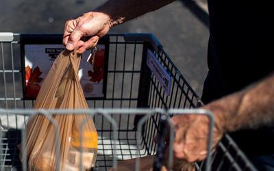 Fry's Plastic Bags