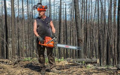 Burnt timber cut.jpg
