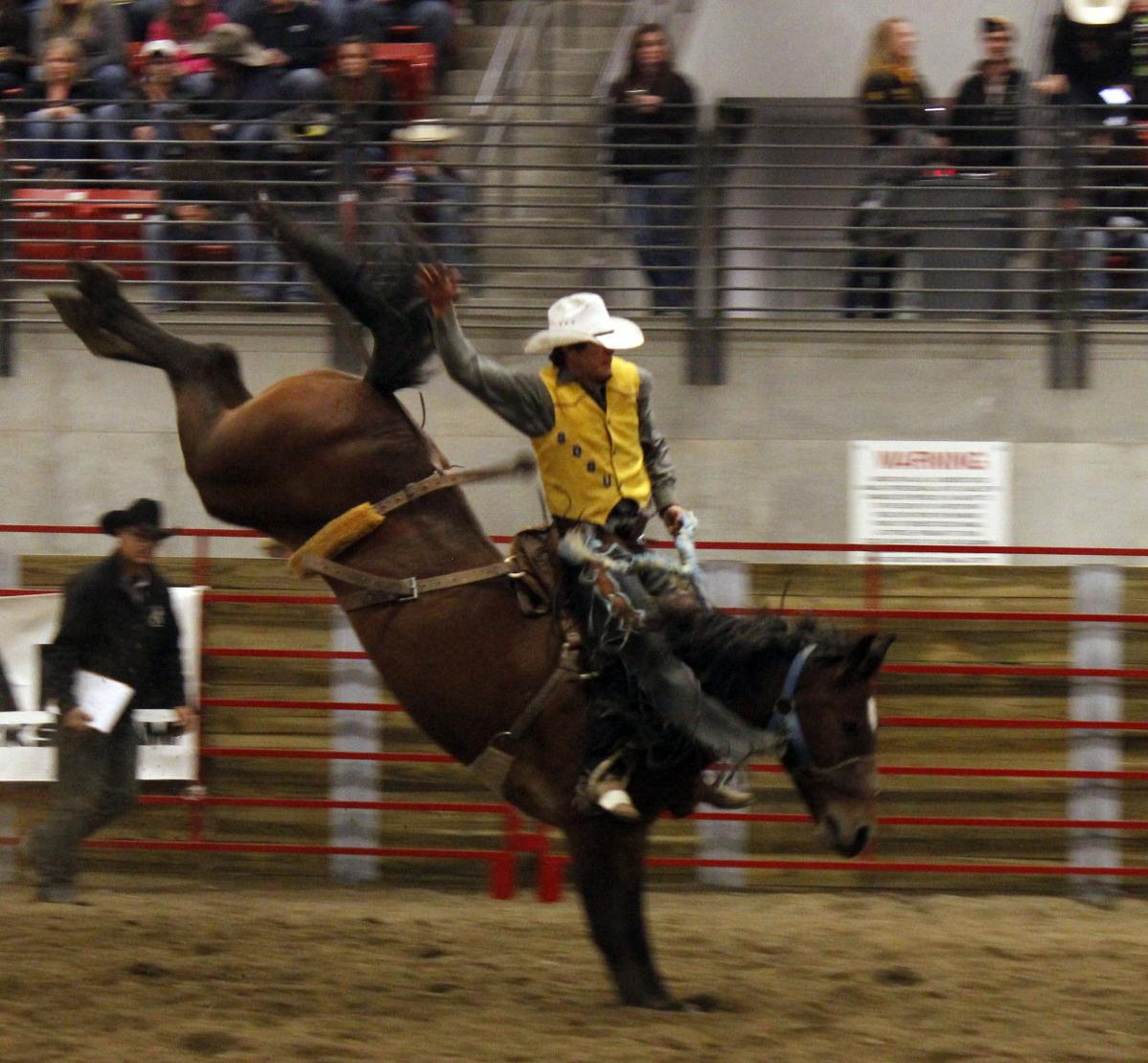 Photos 52nd Cyclone Stampede Photo Galleries