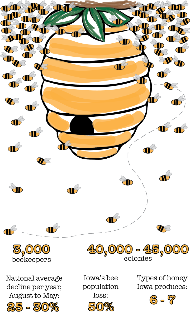 Buzzkill: Iowa bee population sees continued decline | News ...