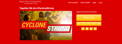 Cyclone Strong Fund