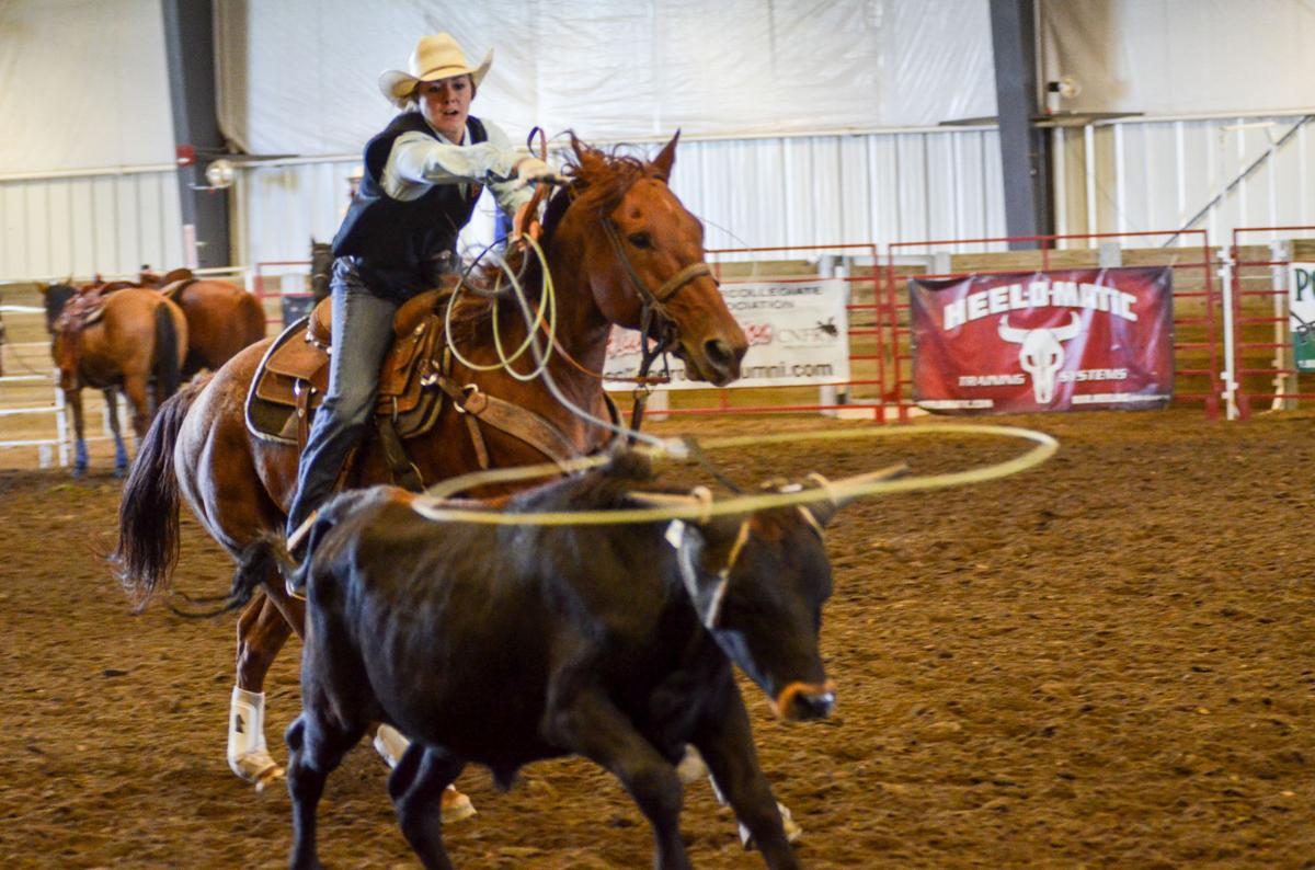 Photos Cyclone Stampede Rodeo Multimedia