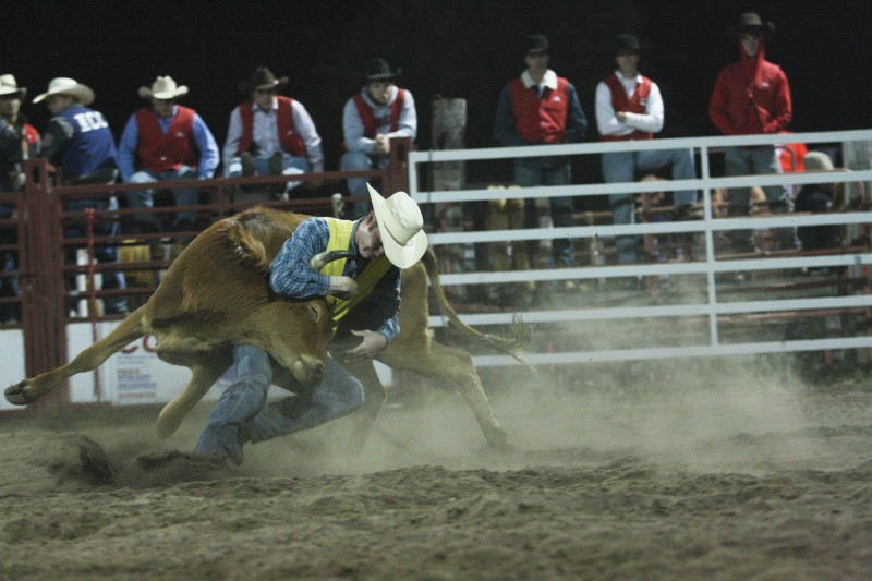 Cyclone Stampede Ropes In Rodeo Enthusiasts News