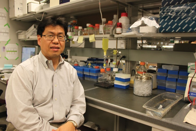 ISU Professor Hunts for HIV Vaccine