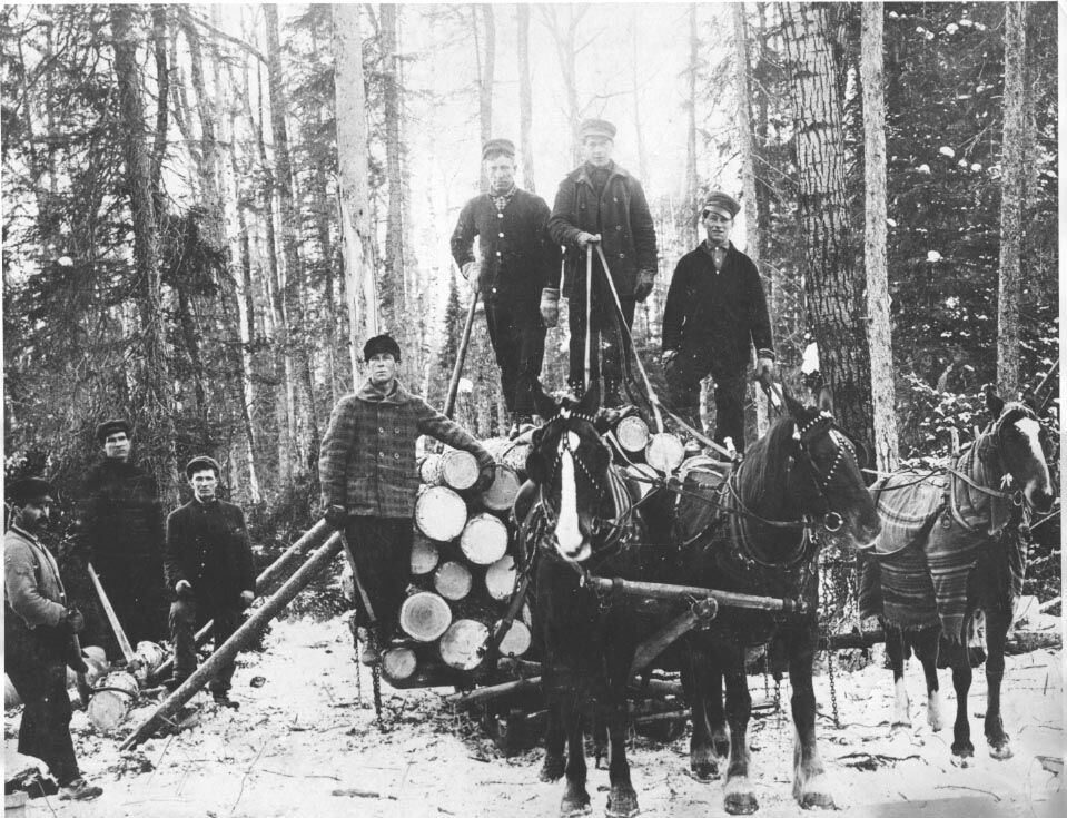 Repeating History: Isanti County and the white pine