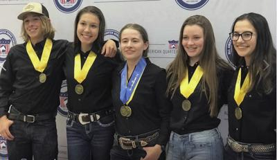 Chisago 4-H youth win at  national horse competition