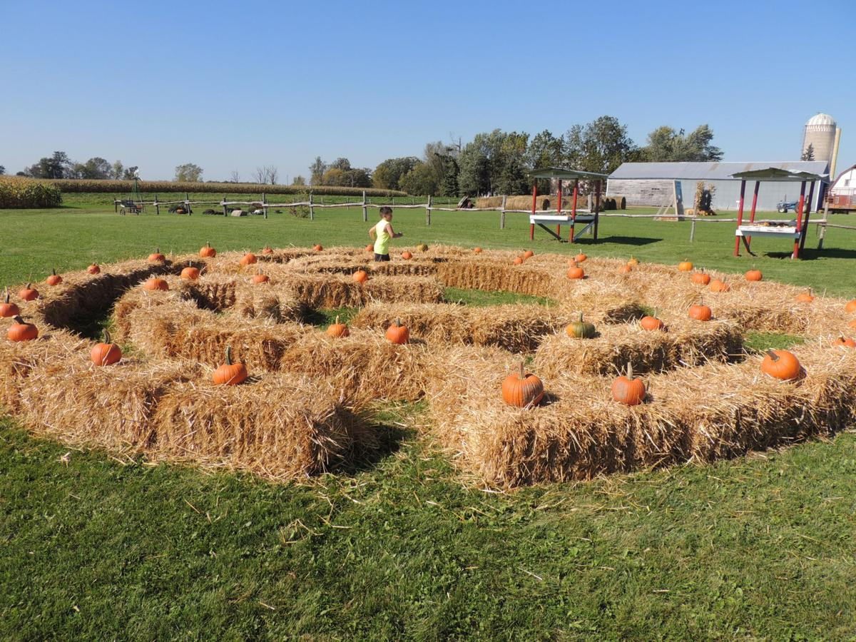 Carve out time to visit a local pumpkin patch | News | isanti ...