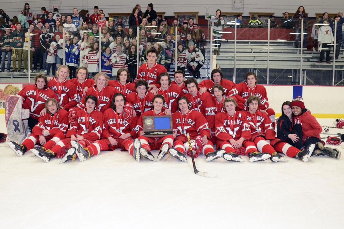 Vikings boys hockey earns first-ever section trophy