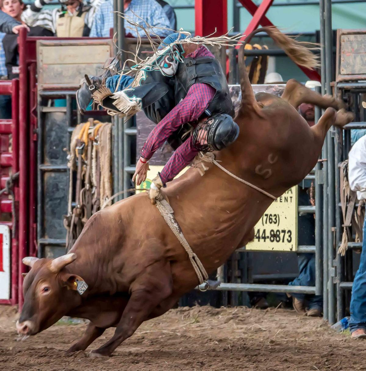 Action as hot as the temperature highlights annual Rodeo