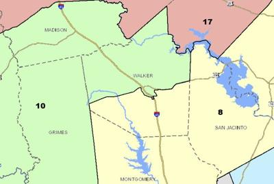 Congressional maps head to Texas House