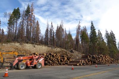 Lumber surplus