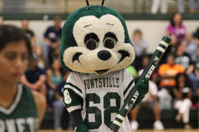 Buzzy, Huntsville High School's mascot, is on the road to becoming a national star