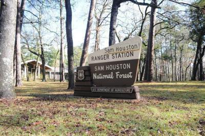 Sam Houston National Forest reopens to visitors post-shutdown