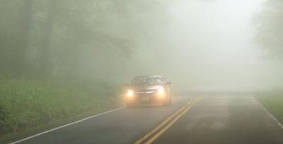 AAA Texas fog