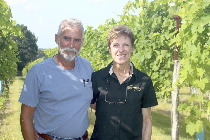 New vineyard aims to provide top Texas wines