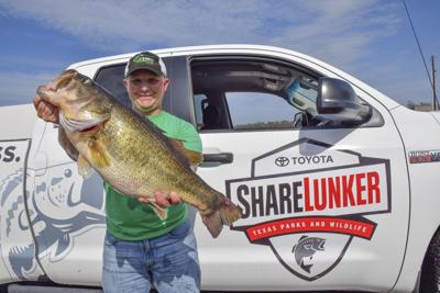 Toyota Sharelunker launches 34th season, anglers should use kid gloves