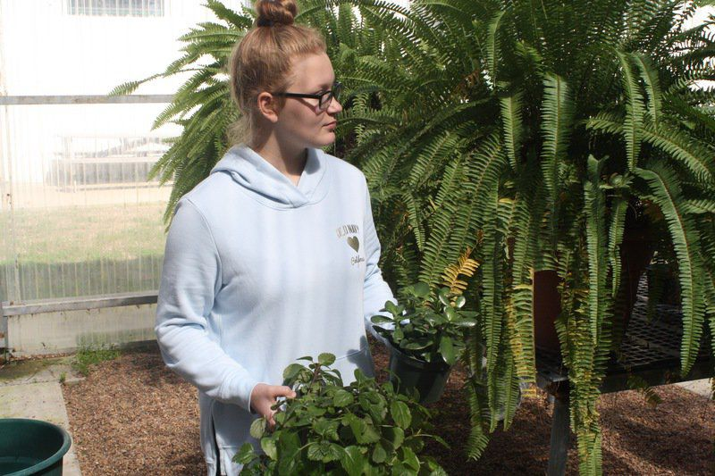 Local chapter readies for national FFA week
