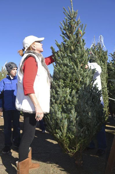 Boy Scout Troop 98 looking to sell rest of Christmas trees