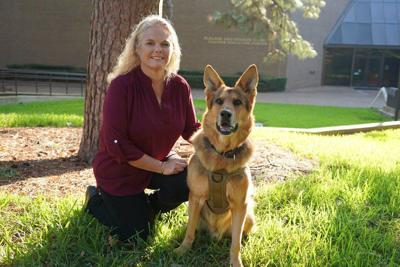 Professor teaches an old dog new tricks
