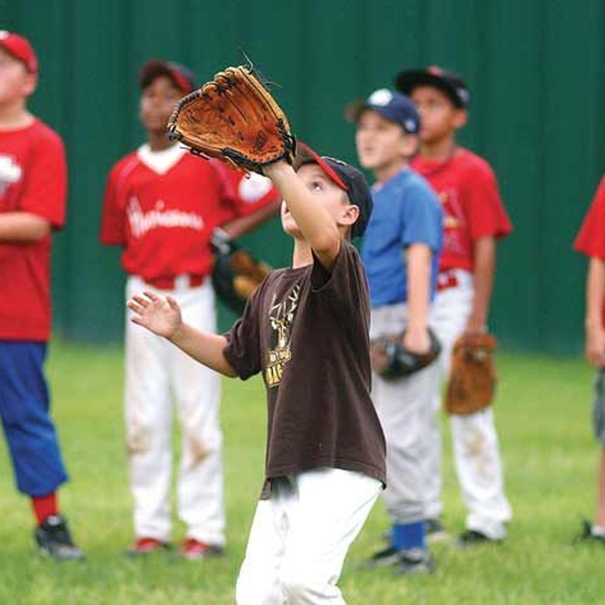 Youth baseball, softball leagues gearing up for 2015 season | News