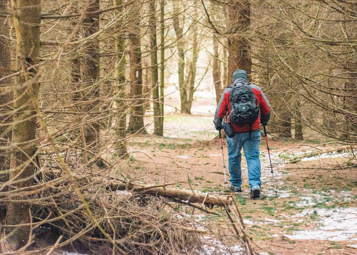 Hiking on the Fingerlakes Trail.