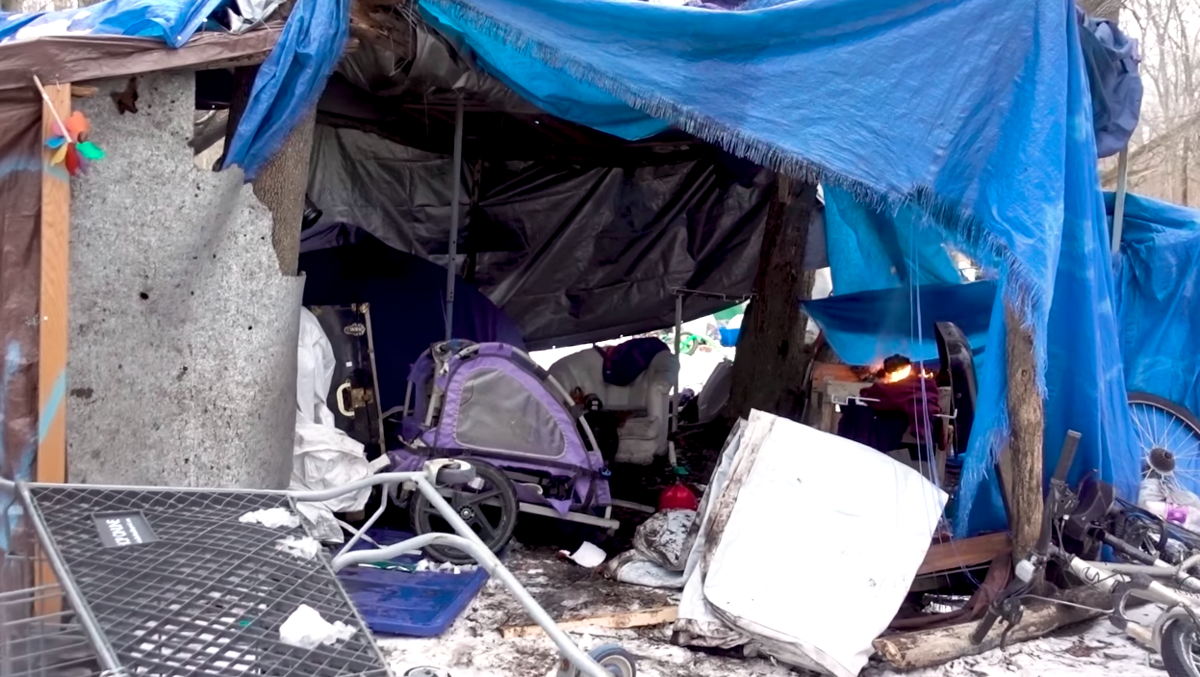 An image of a tent in Ithaca's Jungle.