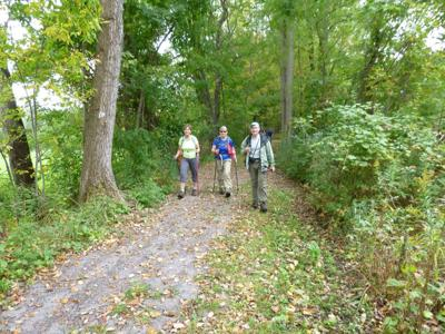 On the Finger Lakes Trail