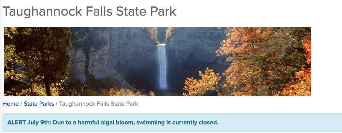 Taughannock Falls HAB page