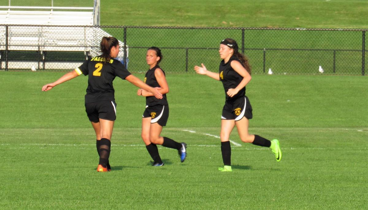 Solid passing lifts Lady Falcons over Moravia