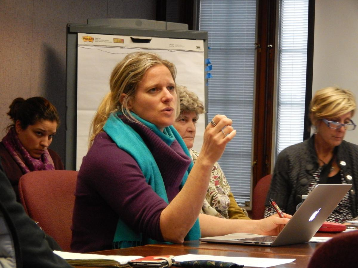 New york tompkins county ithaca 14850 - Legislator Anna Kelles D Ithaca Speaks At A Meeting Of The Workforce Diversity
