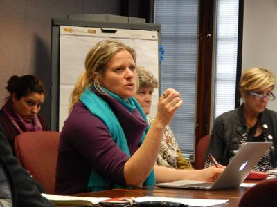 Legislator Anna Kelles (D-Ithaca) speaks at a meeting of the Workforce Diversity and Inclusion Committee of the Tompkins County Legislature January 25.