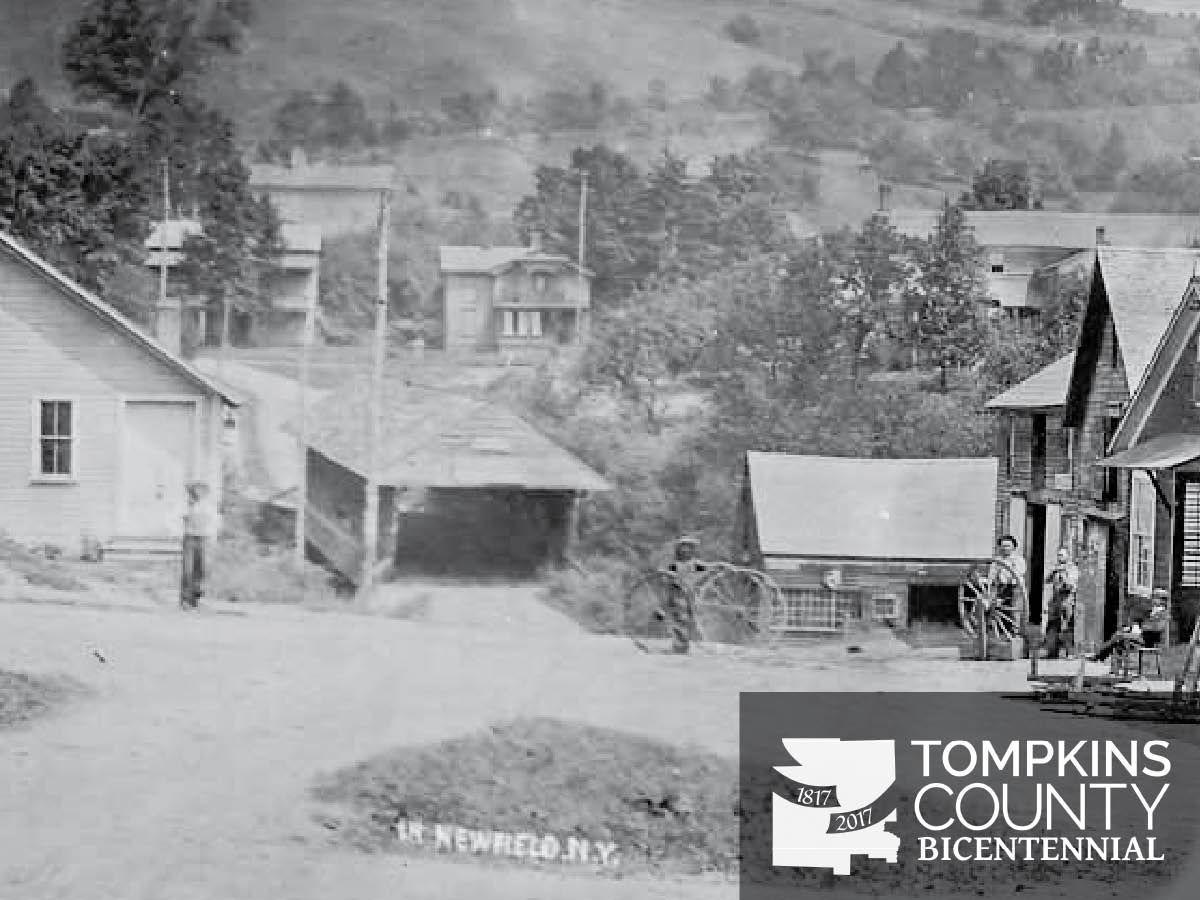New york tompkins county ithaca 14850 - Newfield Ny
