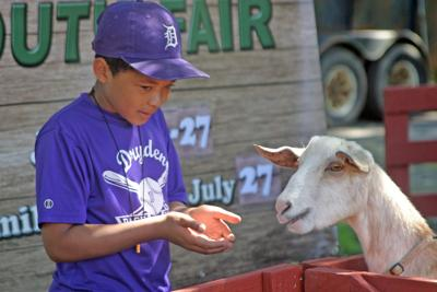Dryden Dairy Day Boy and Goat